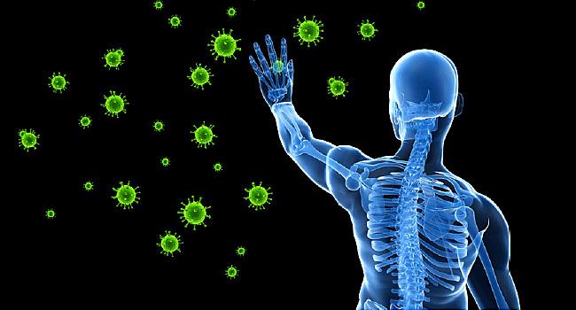 responsive immune system