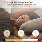 Totobay Wake Up Light sunrise simulation