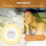 Totobay Wake Up Light fm radio